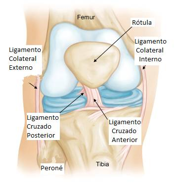 Distension de ligamentos rodilla